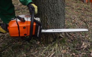 Как правильно спилить дерево бензопилой: технология пиления